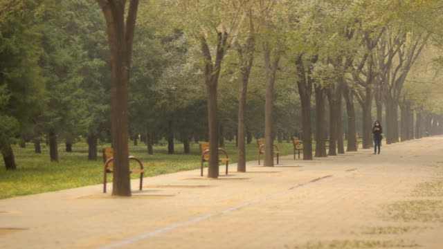 schwenken: park im tempel des himmels unter umweltverschmutzung - himmelstempel stock-videos und b-roll-filmmaterial