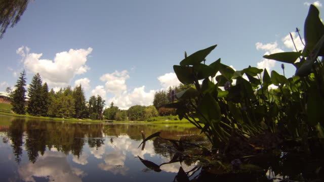 panning/sweeping time lapse sequence - cumulus clouds over a lake - hudson valley stock videos and b-roll footage