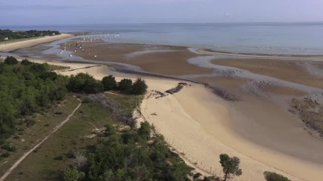 panorama forêt et plage de trousse-chemise - nouvelle aquitaine stock videos & royalty-free footage