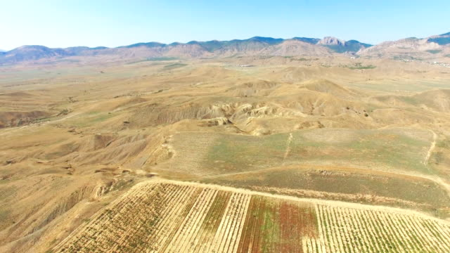 aerial: panorama of mountain plateau with vineyards - plateau stock videos and b-roll footage