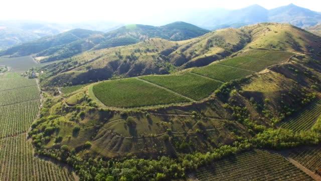 ブドウ畑と山の航空写真: パノラマ - クワッドコプター点の映像素材/bロール