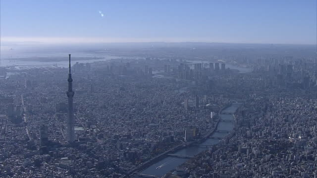 AERIAL, Panorama Of Tokyo With Tokyo Skytree, Japan