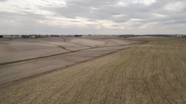 vídeos de stock e filmes b-roll de panoramic aerial view of the small farm surrounded by agricultural fields in the springtime. lyndon township, illinois, usa. drone video footage with the forward camera motion. - illinois