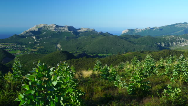 panoramic of the valley of liendo and plantation of eucalyptus, moc montaña oriental costera, natura 2000, cantabria, spain, europe - 40 sekunden oder länger stock-videos und b-roll-filmmaterial