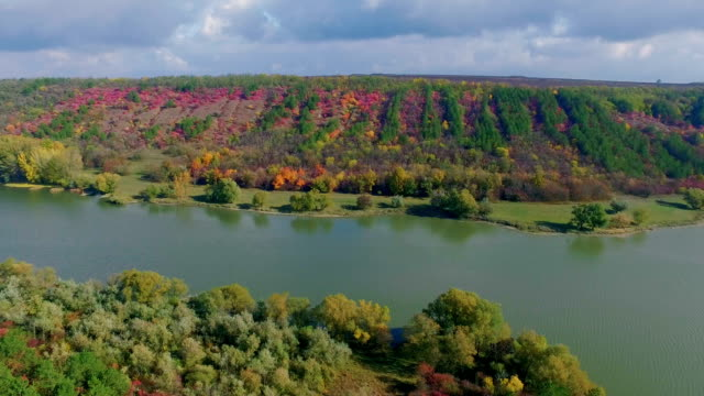 panoramic shot of beautiful autumn forest near the river - copse stock videos & royalty-free footage