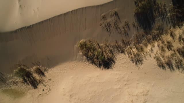 vidéos et rushes de panoramic view from above of the sands in the gobi desert. - désert de gobi