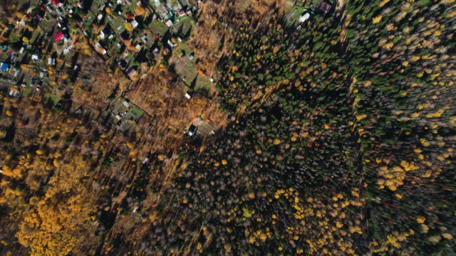 panoramic view from the height of the village in the autumn forest. - russia点の映像素材/bロール