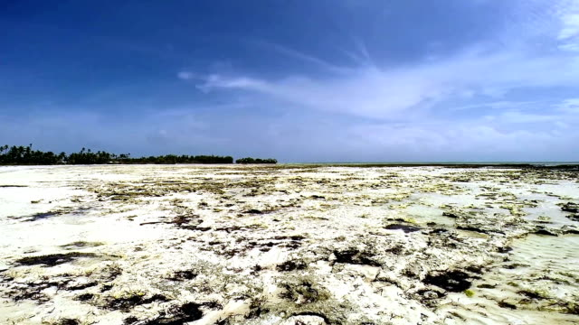 panoramic view of beach with low tide - pjphoto69 stock videos & royalty-free footage
