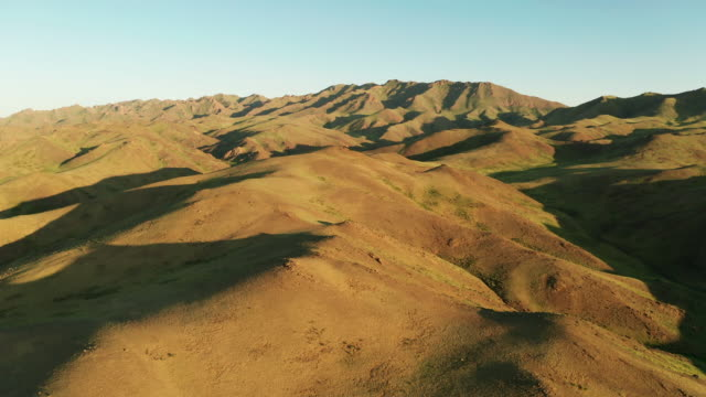 panoramic view of green mountains. altai foothills at sunset. aerial view. mongolia - mongolei stock-videos und b-roll-filmmaterial