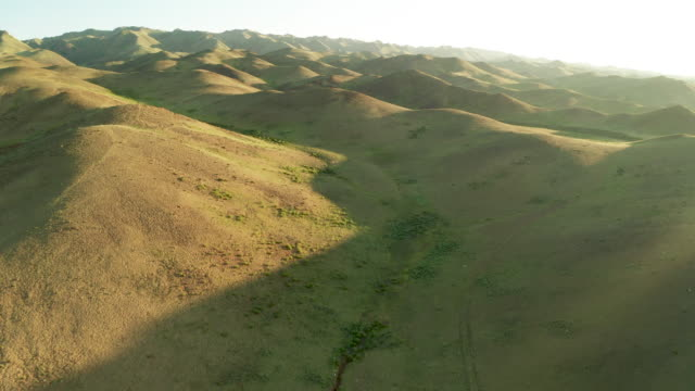 panoramic view of green mountains. altai foothills at sunset. aerial view. mongolia - モンゴル点の映像素材/bロール