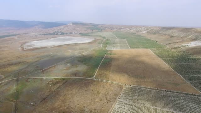 aerial: panoramic view of green vineyards valley - plateau stock videos and b-roll footage