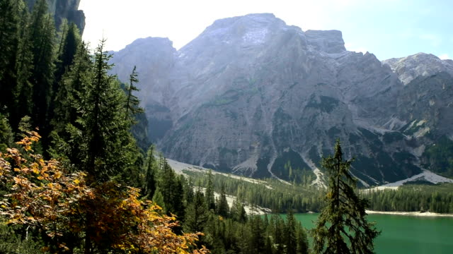 panoramic view of lake braies, south tyrol, italy - pinaceae stock videos & royalty-free footage
