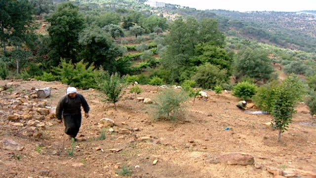 pan-right of two druze farmers parting ways and walking in an orchard. the attire of the farmers indicate that they are druze juhhal, aka uninitiated... - irrigation equipment stock videos & royalty-free footage