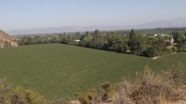 panshot down a hill showing the green vineyards and houses with mountains on the horizon in calera de tango chile calera de tango shows the great... - jesuit stock videos and b-roll footage