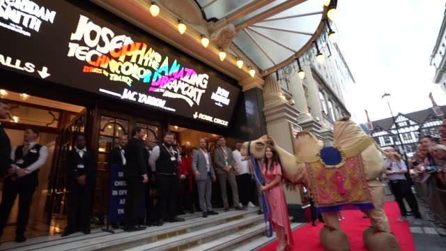 pantomime camel arrives on the red carpet at joseph and the amazing technicolor dreamcoat - press night at london palladium on july 11, 2019 in... - ウェストエンド点の映像素材/bロール