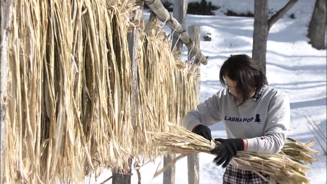 a paper craftswoman bundling barks of kozo (paper mulberry), japan - washi paper stock videos & royalty-free footage