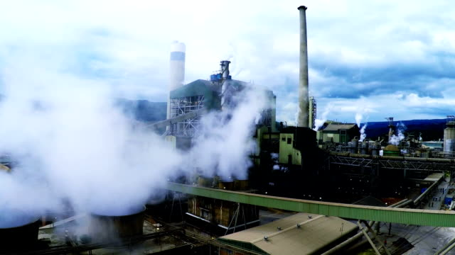 paper mill south africa - pulp stock videos & royalty-free footage