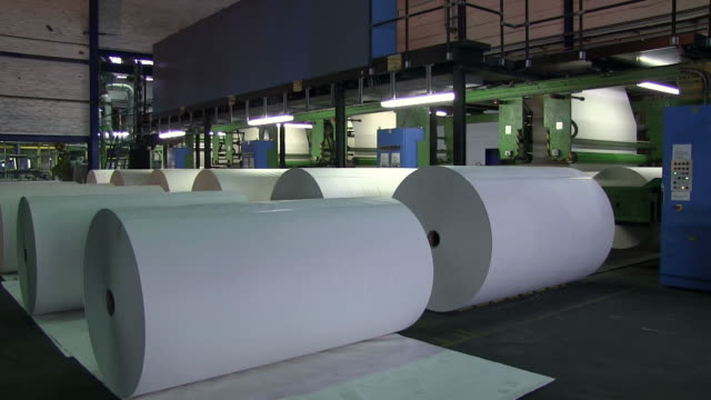 ms pan paper rolls in paper mill / glueckstadt, schleswig-holstein, germany - paper mill stock videos & royalty-free footage