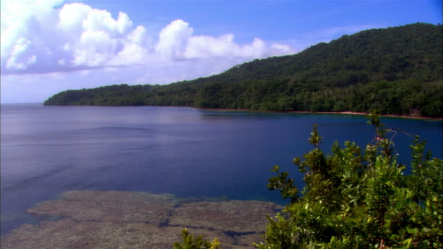 ms, papua new guinea, shoreline - papua stock videos and b-roll footage