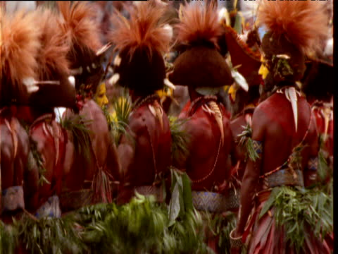 papuan villagers dance in traditional costumes at mount hagen show, papua new guinea - traditional ceremony stock videos and b-roll footage