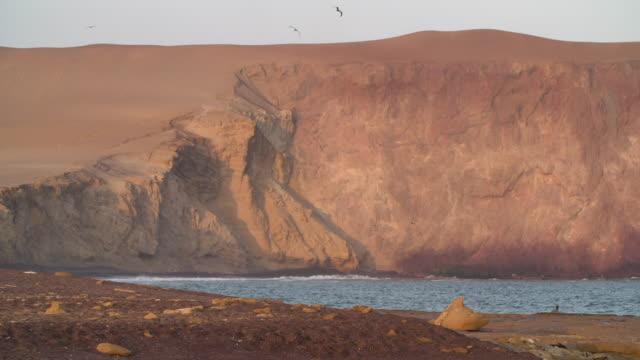 stockvideo's en b-roll-footage met paracas, peru coastline - coastal feature