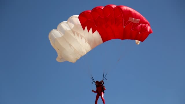 parachuters perform during the 2nd egyptian international parachuting championship and 6th arab parachuting championship in front of the pyramids in... - fallschirm stock-videos und b-roll-filmmaterial