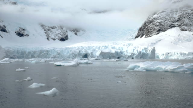 paradise bay glacier in antarctica - named wilderness area stock videos & royalty-free footage