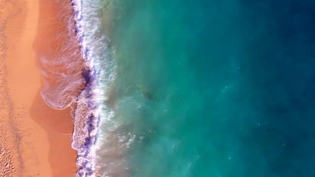 vídeos y material grabado en eventos de stock de paradise beach aerial viev - mar caribe
