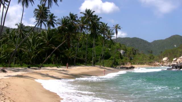 hd: paradise beach - tayrona national park stock videos and b-roll footage