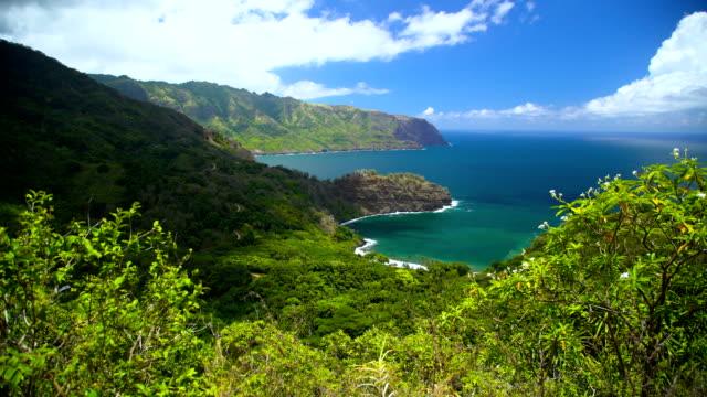 paradise coastline of nahoe mountains hiva oa marquesas - polynesian ethnicity stock videos & royalty-free footage