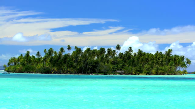 paradise island palm trees aquamarine lagoon bora bora - polynesian ethnicity stock videos & royalty-free footage