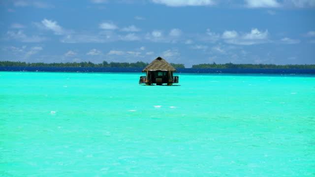 paradise island reef overwater hut tropical bora bora - polynesischer abstammung stock-videos und b-roll-filmmaterial