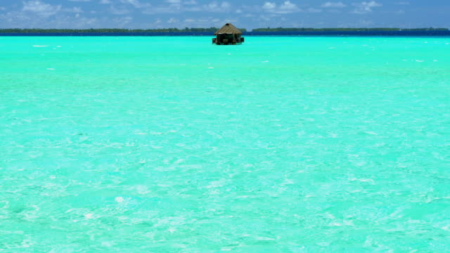 paradise island reef overwater hut tropical bora bora - polynesian ethnicity stock videos & royalty-free footage