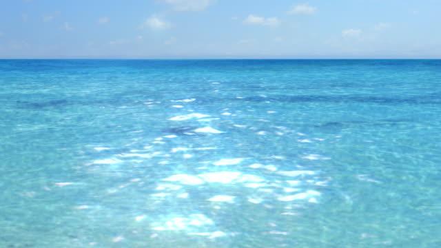 Paradise Ocean HD 1080 Loop