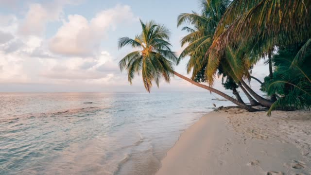 paradisiac beach at maldives - clima tropicale video stock e b–roll