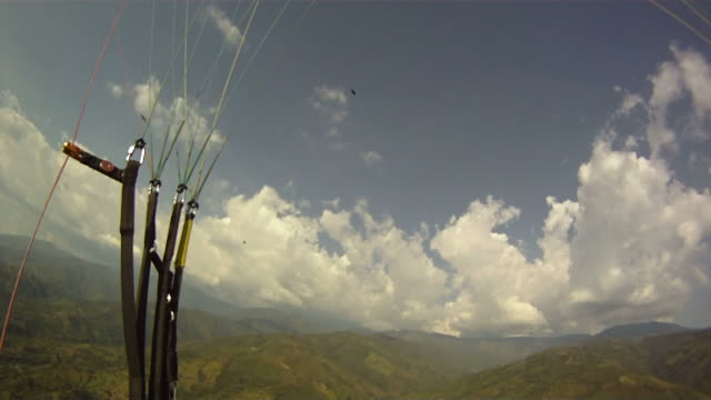 Paraglider In Air Looking Up At Birds Flying