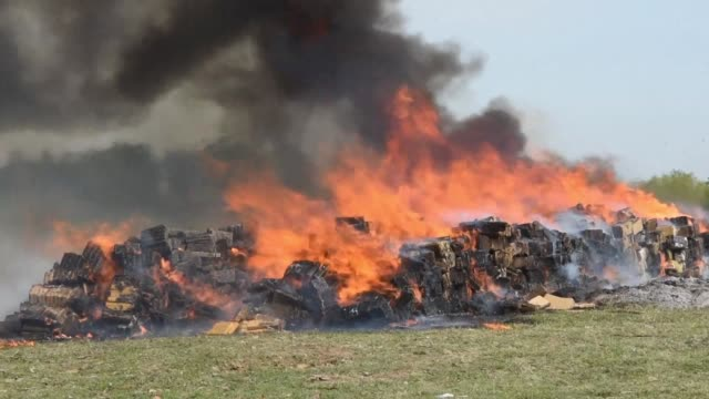 paraguayan authorities burn 14 tons of marijuana in asuncion the drugs of a local value of 21 million dollars were being trafficked to chile - drug trafficking stock videos & royalty-free footage