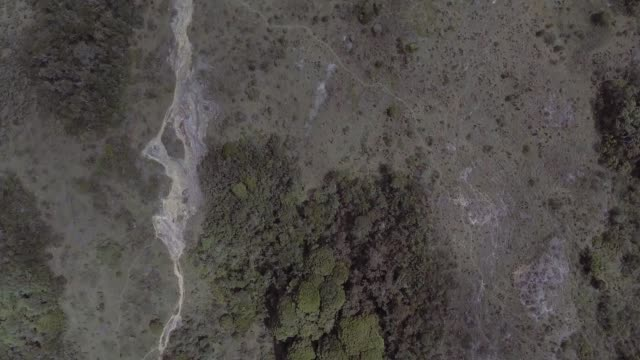 vídeos de stock, filmes e b-roll de paramo with trees and plants around with mountain views in the distance - forma da água