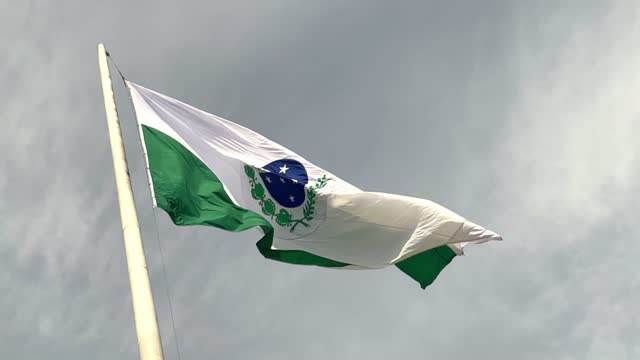 vídeos de stock, filmes e b-roll de bandeira do estado do paraná - bandeira