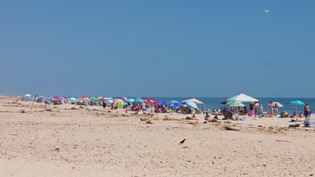 parasols and people on carpinteria state beach - 大人数点の映像素材/bロール