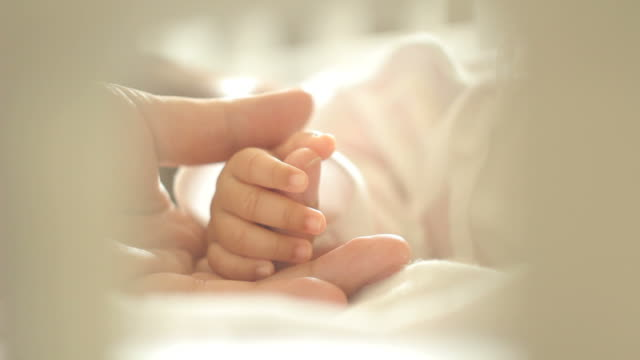 parent holding baby hands - touching stock videos & royalty-free footage