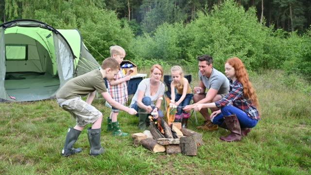 vídeos de stock e filmes b-roll de parents roasting marshmallows with children on camping trip - família com quatro filhos