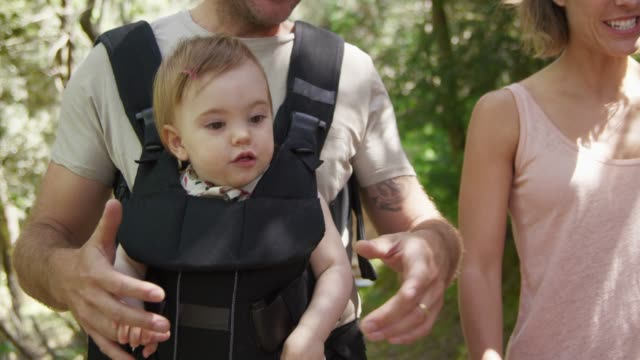 parents walking with toddler in forest - baby carrier stock videos & royalty-free footage