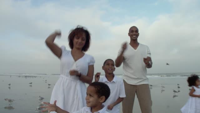 stockvideo's en b-roll-footage met ms parents with children (2-9) feeding birds on beach / jacksonville, florida, usa - activiteit