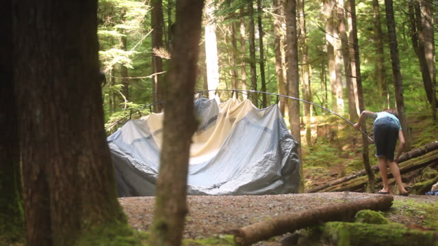 ws ds parents with children (8-11) making tent in squamish alice lake park / squamish, british columbia, canada - tent stock videos & royalty-free footage