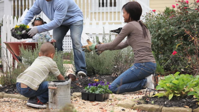 MS TD Parents with children (2-7) planting pansies in domestic garden / Richmond, Virginia, USA.