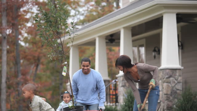 MS TD Parents with children (2-7) planting tree in front yard of home / Richmond, Virginia, USA.