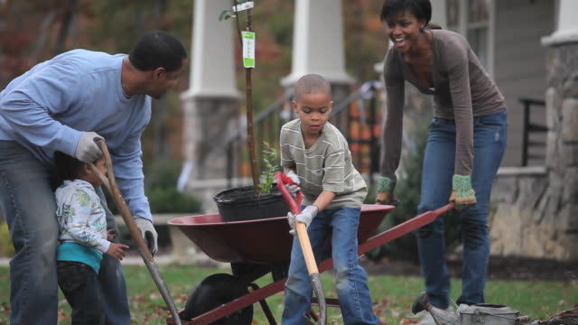 ms td parents with children (2-7) planting tree in front yard of home / richmond, virginia, usa. - in front of stock videos & royalty-free footage