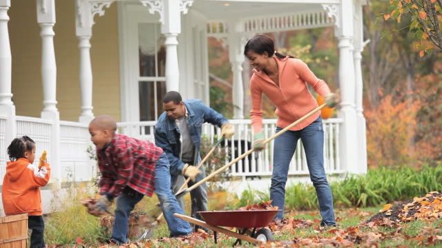 ms td parents with children (2-7) raking leaves in front yard of home / richmond, virginia, usa. - in front of stock videos and b-roll footage