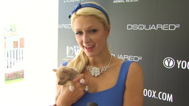 Paris Hilton on being a part of the afternoon what she thinks of DSquared2's new canine couture line her dog how she named her dog her daily routine...